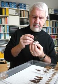 Prof. Dr. Hansruedi Wildermuth