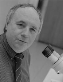 Prof. Dr. Wilfried Wichard