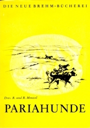 Pariahunde