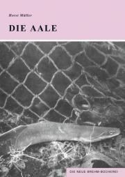 Die Aale