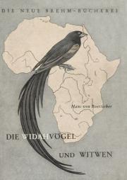 Die Widahvögel und Witwen