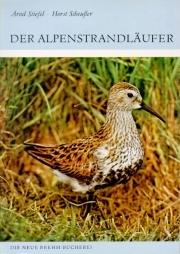 Der Alpenstrandläufer