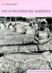 Die Europäische Sardine