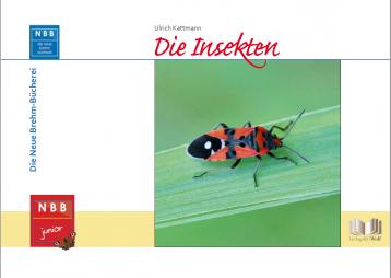 Die Insekten