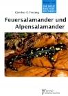Feuersalamander und Alpensalamander