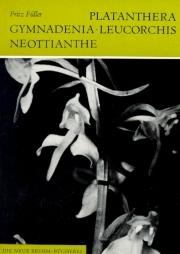 Palatanthera, Gymnadenia, Leucorchis, Neottianthe
