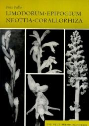 Limodorum, Epipogium, Neottia, Corallorhiza
