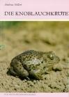 Die Knoblauchkröte