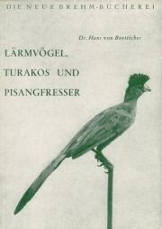 Lärmvögel, Turakos und Pisangfresser