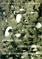 Die Muscheln und Schnecken der deutschen Meeresküsten