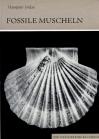 Fossile Muscheln
