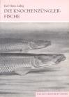 Die Knochenzünglerfische