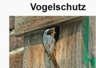 Nistkästen und Vogelschutz