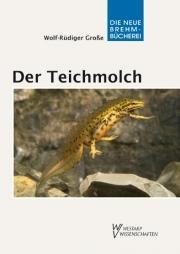 Der Teichmolch - E-Book