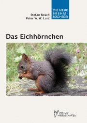 Das Eichhörnchen - E-Book
